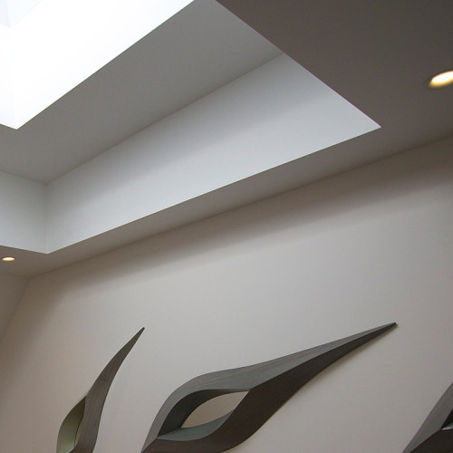 CollegeFarmDevelopments_SkyLight